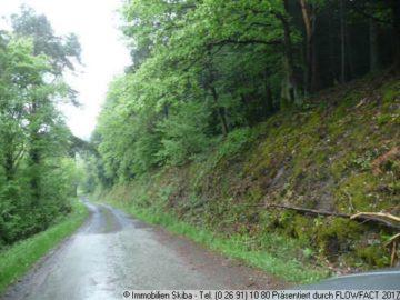 Wald- und Wiesengrundstücke in Schuld 53520 Schuld (Ahr), Land-/Forstwirschaft