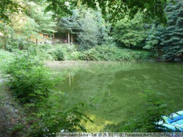 Paradies in Alleinlage in der Eifel: 4 Fischteiche + Wald 53506 Heckenbach-Cassel, Land-/Forstwirschaft