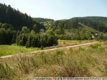 Neubaugebiet: Ruhige Lage am Waldrand 53518 Leimbach-Gilgenbach, Wohnen