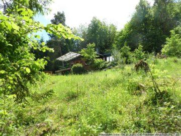 Wochenendhaus in selten schöner absoluter Alleinlage in der Eifel 53518 Adenau-Breidscheid, Einfamilienhaus