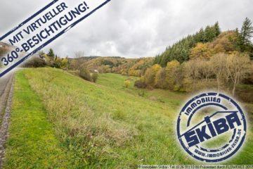 Großes, im Grünen gelegenes Grundstück am Waldrand im Eifelörtchen Baar-Büchel 56729 Baar-Büchel, Wohnen
